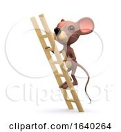 3d Mouse Up Ladder by Steve Young