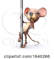 3d Pole Dancing Mouse by Steve Young