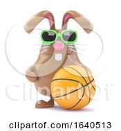 3d Basketball Bunny