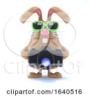 3d Bunny Photographer by Steve Young