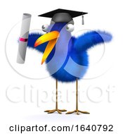 3d Bluebird Has Graduated by Steve Young