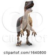 3d Velociraptor