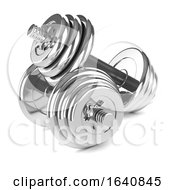 3d Two Chrome Weights At Rest