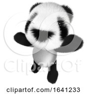 3d Funny Cartoon Baby Panda Bear Character Cheering Happily by Steve Young