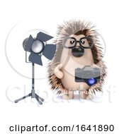 3d Photographer Hedgehog by Steve Young