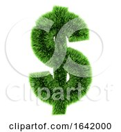 3d Green Grass US Dollar Symbol by Steve Young