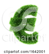 3d Green Grass Euro Symbol by Steve Young