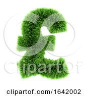 3d Green Grass UK Pound Symbol by Steve Young
