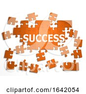 3d Jigsaw Puzzle Success by Steve Young