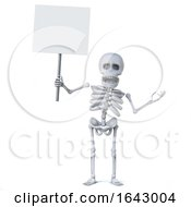 3d Skeleton Has A Blank Placard