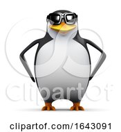 3d Cool Penguin by Steve Young