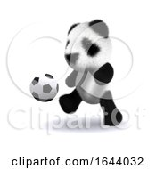 3d Baby Panda Football by Steve Young