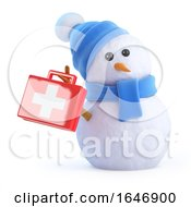 3d Snowman Supplies First Aid