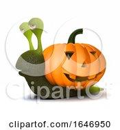 3d Pumpkin Snail Shell