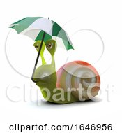 3d Snail Umbrella