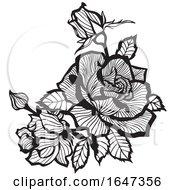 Poster, Art Print Of Black And White Roses