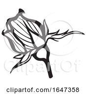 Poster, Art Print Of Black And White Rose Bud