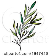 Green Sprig