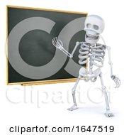 3d Skeleton Teaching At The Blackboard