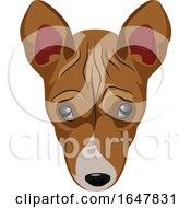 Basenji Dog Face