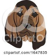 Blood Hound Dog Face
