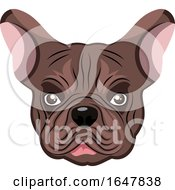 Poster, Art Print Of French Bulldog Face