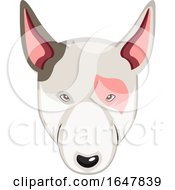 Bull Terrier Dog Face
