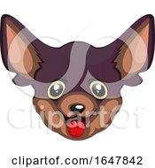 Poster, Art Print Of Chihuahua Dog Face