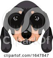 Dachshund Dog Face