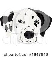 Dalmatian Dog Face