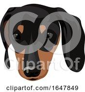 Min Pin Dog Face
