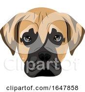 Poster, Art Print Of Mastiff Puppy Dog Face