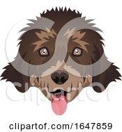 Newfoundland Dog Face by Morphart Creations