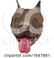 Poster, Art Print Of Pit Bull Dog Face