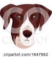 Pointer Dog Face