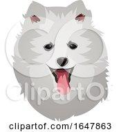 Pomeranian Dog Face by Morphart Creations