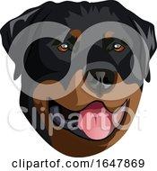 Rottweiler Dog Face