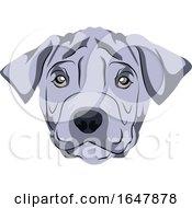 Thai Ridgeback Dog Face by Morphart Creations