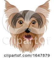 Yorkie Yorkshire Terrier Dog Face