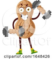 Cartoon Peanut Mascot Character Working Out With Dumbbells by Morphart Creations