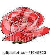 Poster, Art Print Of Watercolor Rose