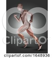 3D Male Figure In Running Pose With Leg Muscles Highlighted