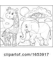 Black And White Elephant And Giraffe