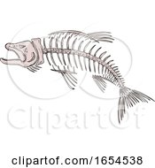 King Salmon Skeleton Drawing