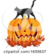 Vector Of Black Cat On Pumpkin With Autumn Leaves by Morphart Creations