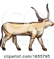 Sketched Cow