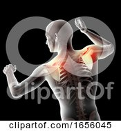 3D Male Medical Figure With Shoulder Blades Highlighted