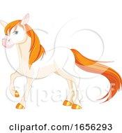 Beautiful White Horse With Orange Hair