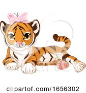 Cute Female Baby Tiger Wearing A Bow