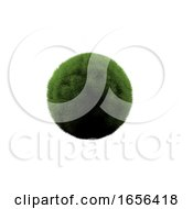 3D Grass Globe On A White Background